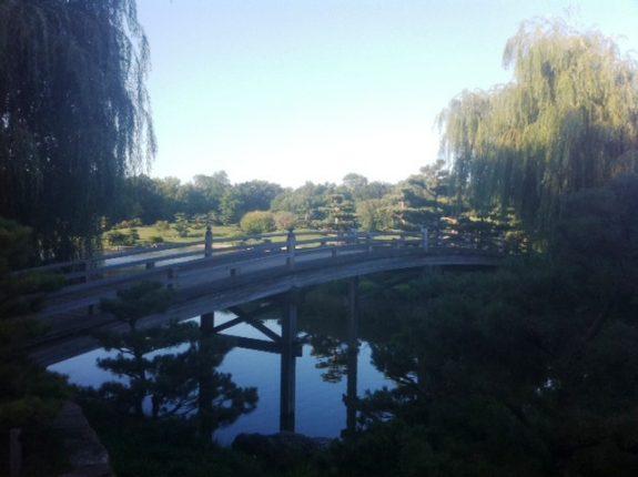 bridge in Chicago Botanic Garden, Japanese Islands