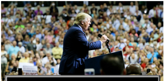 What Marketers can Learn from the Trump Campaign