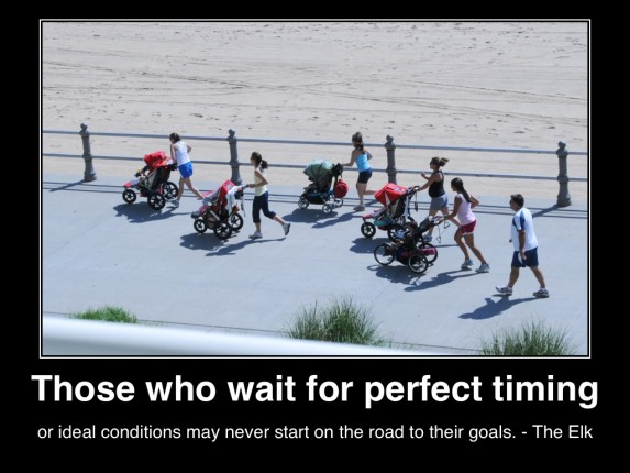 those-who-wait-for-perfect-timing-or-ideal-conditions-may-never-start-on-the-road-to-their-goals-the-elk-mhmsm-com(c)lifestylefactoryhomesllc-