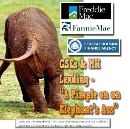 ElephantAssGSEFannieFreddieFHFAPostedDailyBusinessNewsMHProNews
