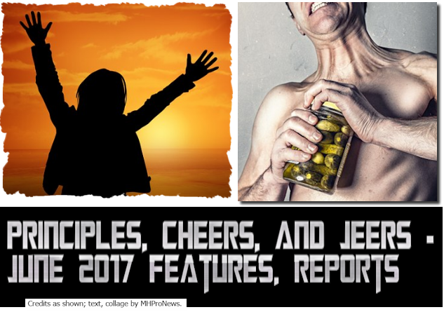 PrinciplesCheersJeersJune2017FeaturesReportsMastheadManufacutredHousingIndustryCommentaryMHProNews