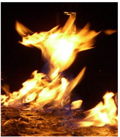 phoenix-rising-flickrcc-credit-posted-masthead-blog-mhpronews-com
