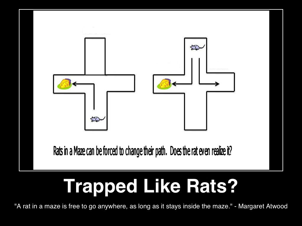 traped-like-rats-a-rat-in-a-maze-is-free-to-go-anywhere--as-long-as-it-stays-inside-the-maze-margeret-atwood-(c)2013lifestyle-factory-homes-llc-posted-masthead-blog.png